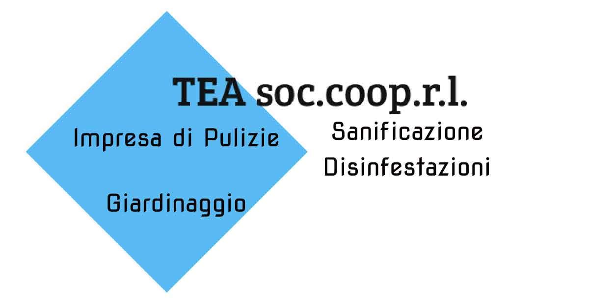Tea impresa di pulizia